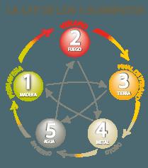ley 5 elementos