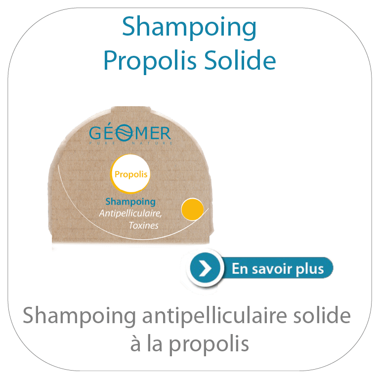 shampoing propolis solide